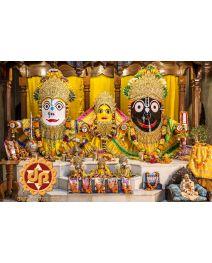 Jagannath Yellow