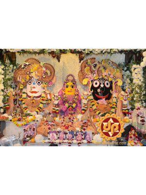 Jagannath Odana Sasthi Web