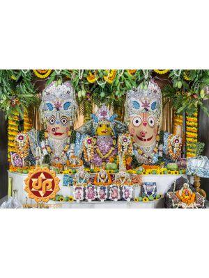 Jagannath Chandan