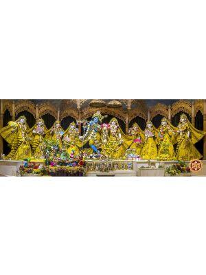 SSRMAS Yellow Chandan